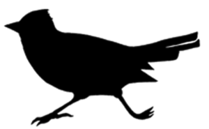 cotovia mais recortada-logotipo